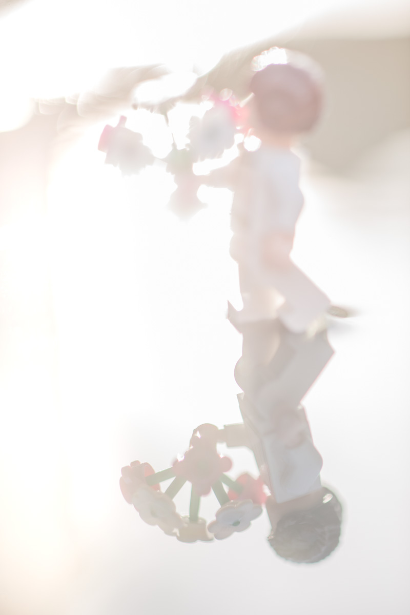 flowers – a reflection of a toy 15/52