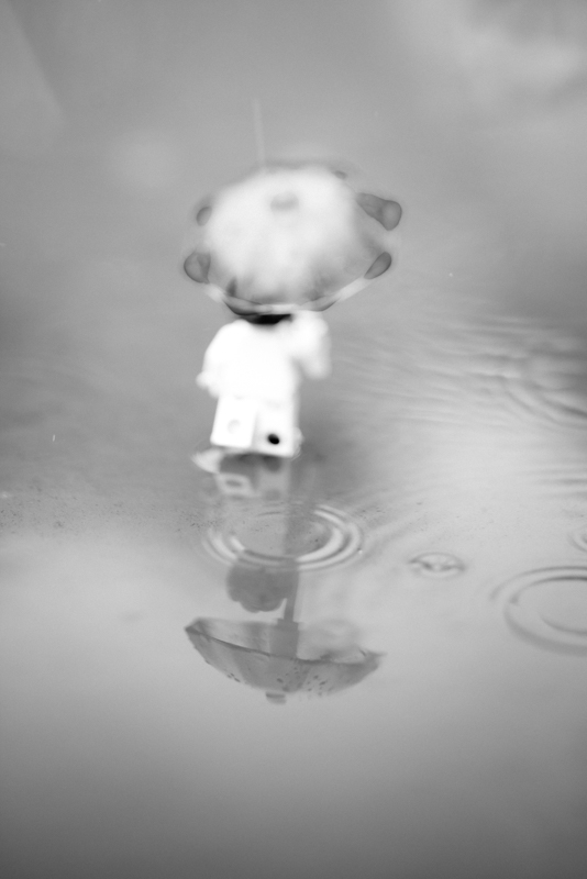 Summer rain – a reflection of a toy 26/52
