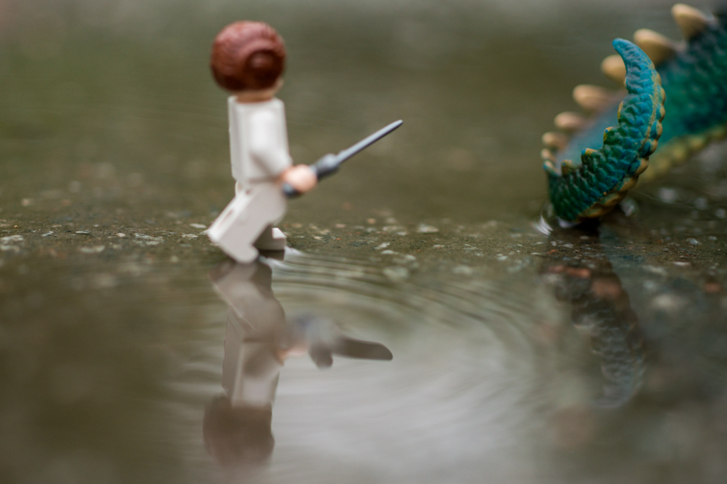 St George (or not) and the Dragon – a reflection of a toy 28/52