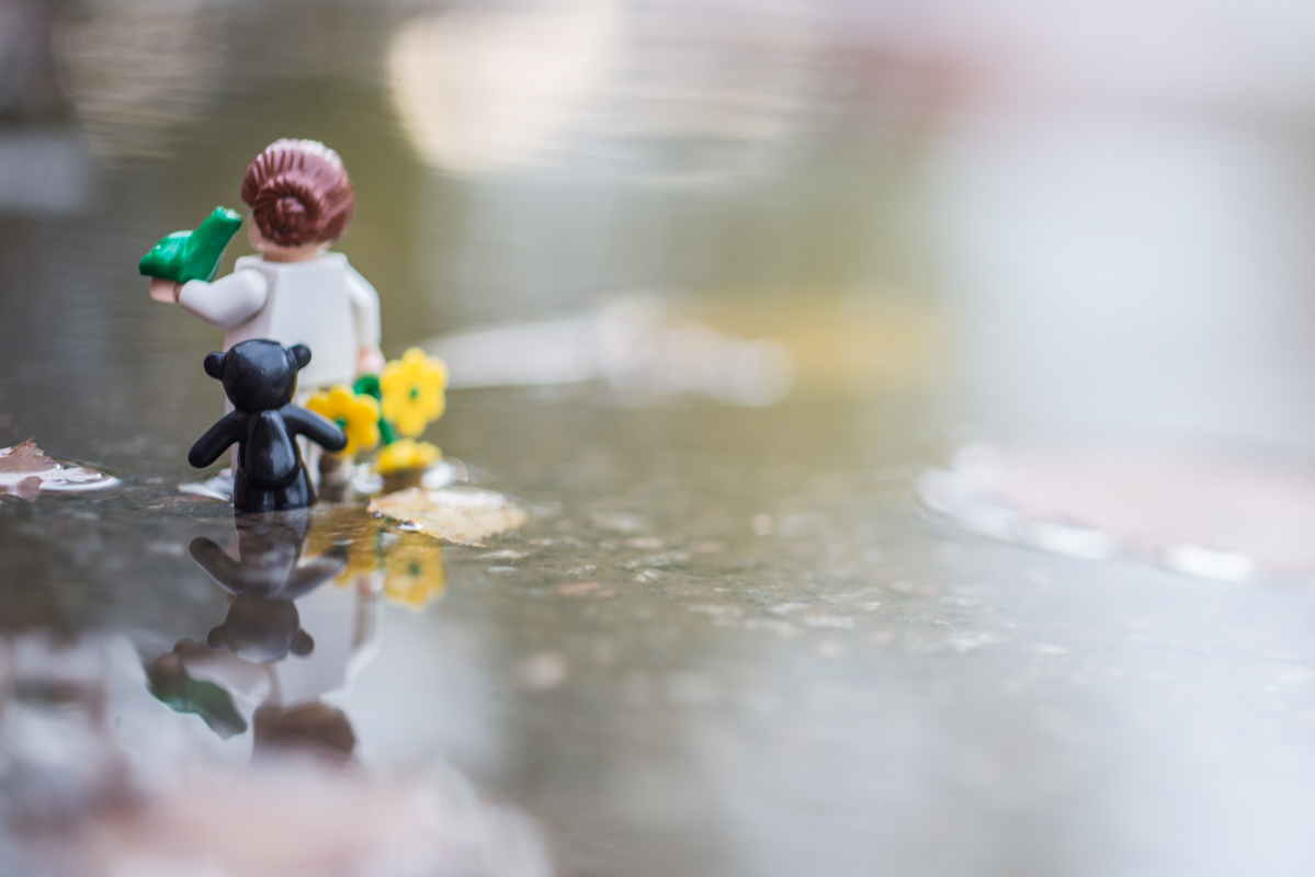 in the search for love – a reflection of a toy 41/52