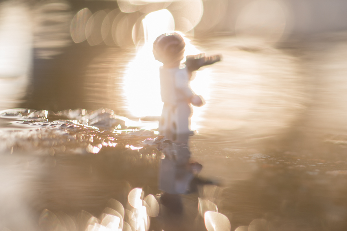 sunkissed – a reflection of a toy 43/52