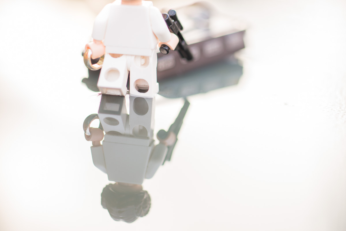 Searching for a prince – a reflection of a toy 17/52